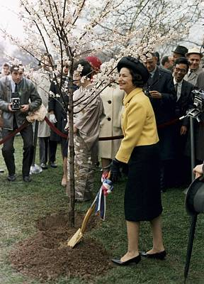 Lady Bird Johnson Planting A Tree Art Print by Everett
