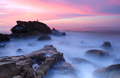 Laguna Beach Sunrise Art Print