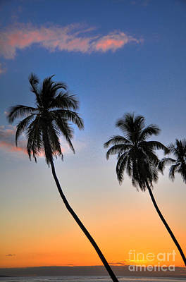 Lahaina Palms Art Print by Kelly Wade