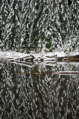 Seattle Photograph - Lake 22 Reflection Of Pines by Twenty Two North Photography
