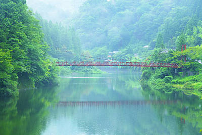 Metal Tree Photograph - Lake Bridge In Fog by Noriyuki Araki