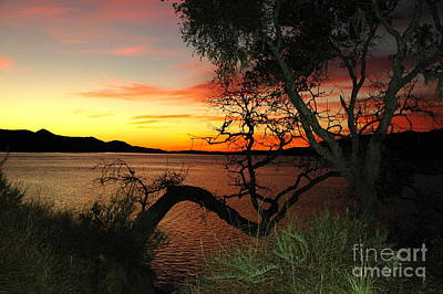 Photograph - Lake Cachuma Evening by Johanne Peale