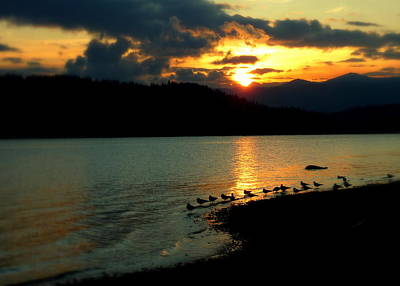 Print featuring the photograph Lake Coeur D'alene Sunset Reflections by Cindy Wright