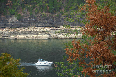 Catch Of The Day - Lake Cumberland by Anne Kitzman