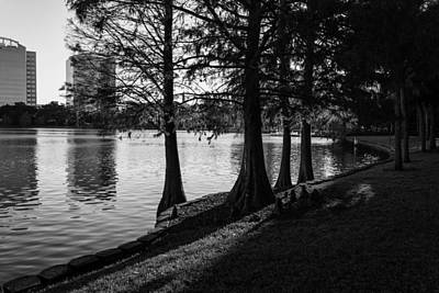 Art Print featuring the photograph Lake Eola Water Edge by Lynn Palmer