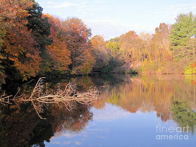 Photograph - Lake In Autumn by Richard Nickson