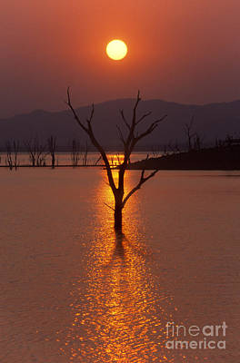 Photograph - Lake Kariba - Zimbabwe by Craig Lovell