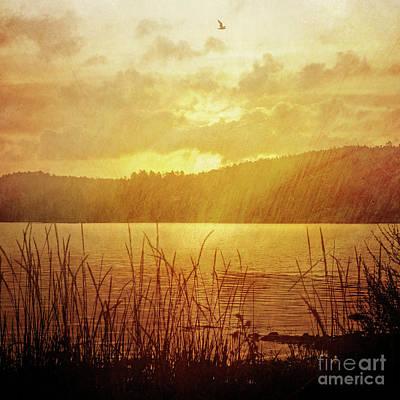 Vintage Landscape Photograph - Lake Light Vintage by Lutz Baar