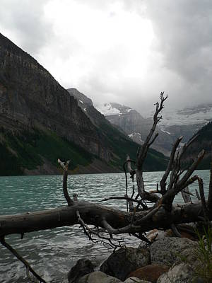Art Print featuring the photograph Lake Louise by Laurel Best