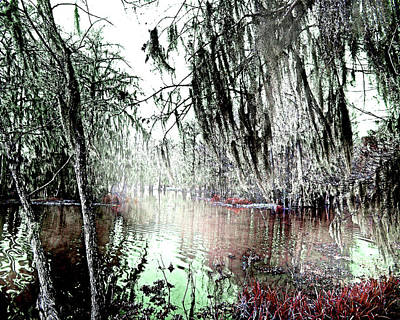 Art Print featuring the photograph Lake Martin Swamp by Lizi Beard-Ward