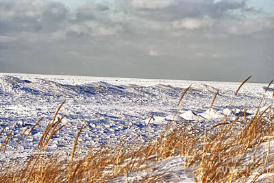 Lake Michigan On Ice Art Print by Christopher Purcell