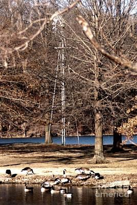 Photograph - Lake Olathe Windmill by Mark McReynolds