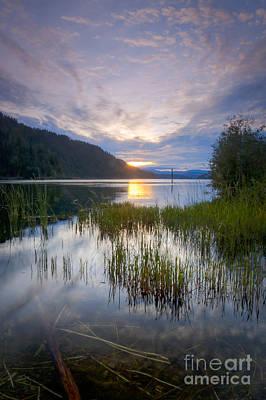 Lake Reeds Art Print by Idaho Scenic Images Linda Lantzy