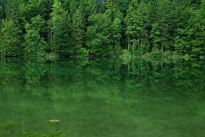 Lake Schwanensee Art Print by Ingmar Wesemann