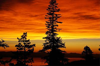 Lake Tahoe Sunset Art Print by Bruce Friedman