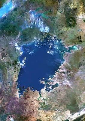 Victoria Land Photograph - Lake Victoria, Satellite Image by Planetobserver