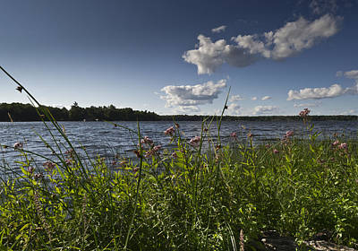 Photograph - Lake View by Gary Eason