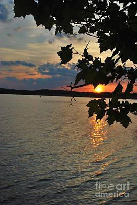 Lakeset Leaves Art Print by TSC Photography Timothy Cuffe Jr