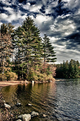Photograph - Lakeshore In Nh by Edward Myers