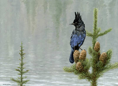 Painting - Lakeside Bandit by Peter Eades