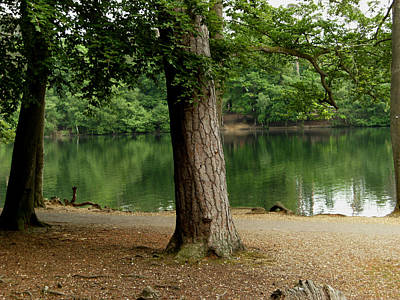 Photograph - Lakeside Scene by Chris Day