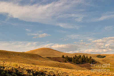 Photograph - Lamar Hills by Charles Kozierok