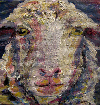 Painting - Lamb Chop by Nanci Cook