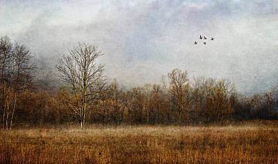 Photograph - Lambent Landscape by Dale Kincaid