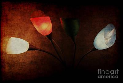 Lamp Art Print by Billie-Jo Miller