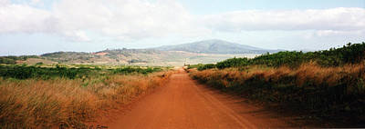 Photograph - Lanai Road by C Sitton