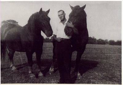 Photograph - Land Army Horses 1940 by Richard Reeve