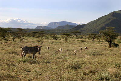 Photograph - Land Of The Samburu Northern Kenya by Joseph G Holland