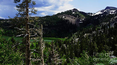 Photograph - Landscape - Carson Pass 1 by Xueling Zou