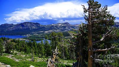 Photograph - Landscape - Carson Pass 2 by Xueling Zou