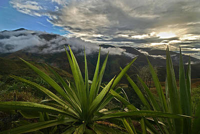 Landscape Of Southern Colombia. Department Of Narino. Art Print by Eric Bauer