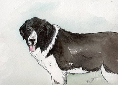 Painting - Landseer Newfoundland by Nancy Patterson