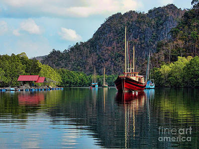 Langkawi Mangroves Art Print by Graham Taylor