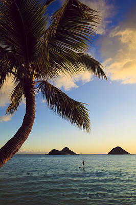 Stand Up Paddle Board Photograph - Lanikai Paddler At Sunrise by Tomas del Amo