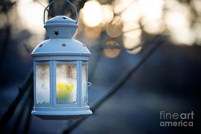 Photograph - Lantern by Kati Molin