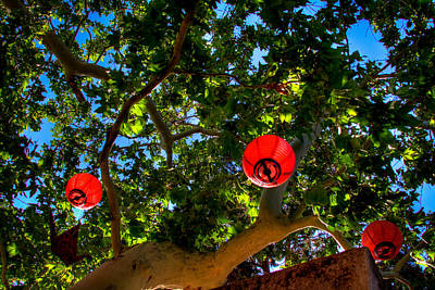 Photograph - Lanterns At Tlaquepaque In Sedona Arizona by David Patterson