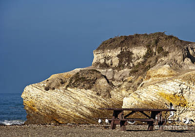 Large Rock And Picnic Area On Beach Art Print by David Buffington
