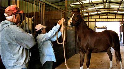 Photograph - Larry - Barbara - Horse 2009 by Glenn Bautista