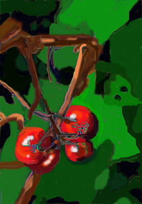 Digital Art - Last Four Tomatoes by Ian  MacDonald
