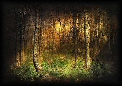Fog Mist Mixed Media - Last Rays by Svetlana Sewell
