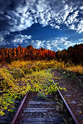 Autumn Leaf Photograph - Last Stop by Phil Koch