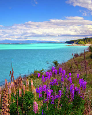 Photograph - Late Afternoon At Lake Pukaki by Harry Strharsky