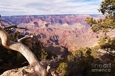 Late Afternoon At The South Rim Art Print by Bob and Nancy Kendrick