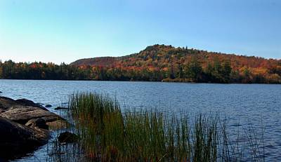 Late Fall On Lake Lila Art Print