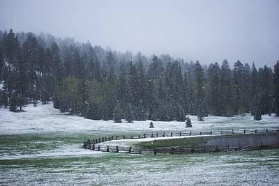 Late Season Snowstorm Art Print by C Thomas Willard
