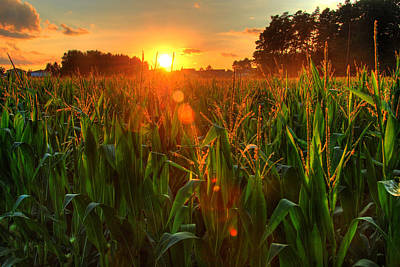Late Summer Sunset Over The Harvest Art Print